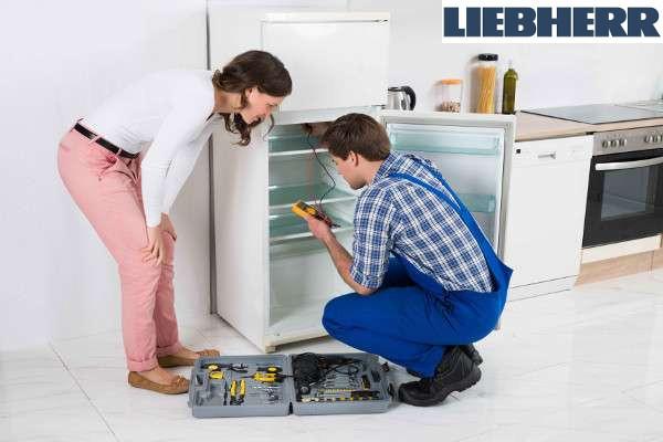 tecnico reparacion electrodomesticos liebherr valencia